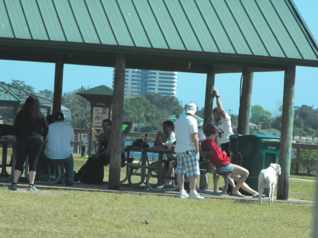 Daytona Narcotics Anonymous  Meetings Holly Hill Florida